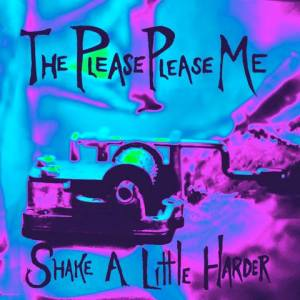 The Please Please Me - Shake A Little Harder