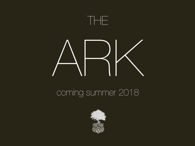 Under The Big Oak Tree premieres The Ark ahead of their summer release of their album of the same name in summer 2018.
